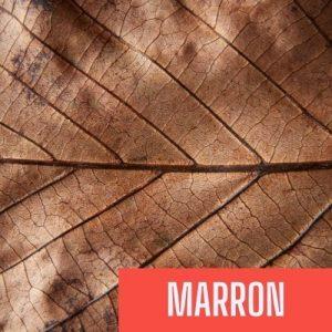 couleur marron