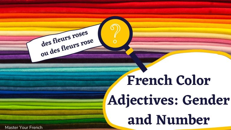 french color adjectives gender and number