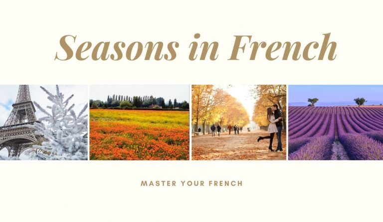 seasons french scenes winter spring fall summer