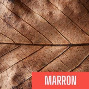 color french marron