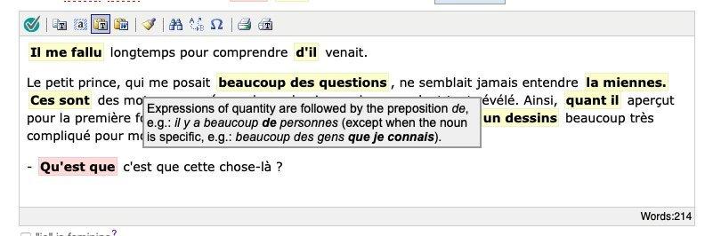 bonpatron french grammar checker with an explanation